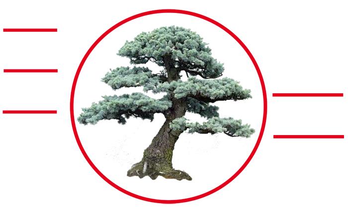 ouverture zen simplicitŽ
